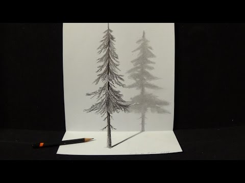 How to Draw Pine Tree - Drawing 3D Illusion with Graphite Pencil - Trick Art