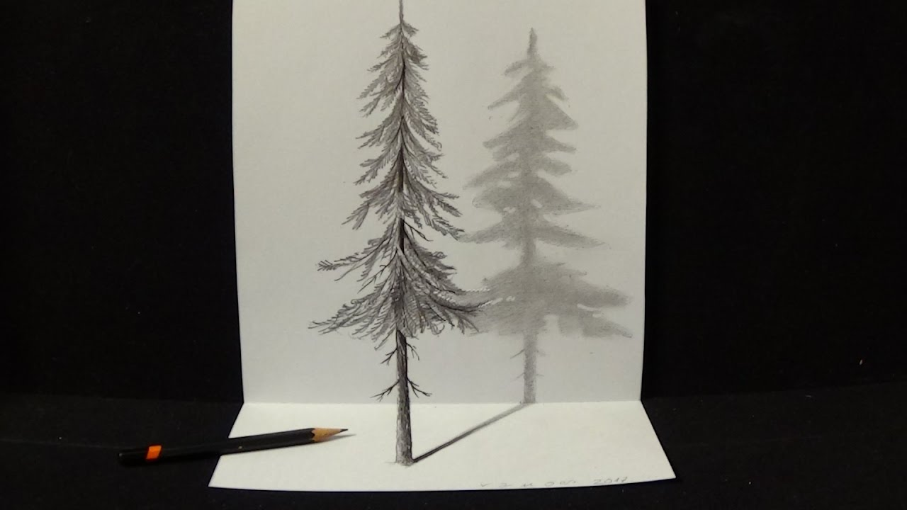 How to Draw Pine Tree - Drawing 3D Illusion with Graphite ...