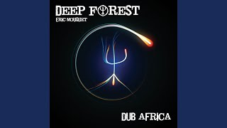 Dub Africa (Housemeisters Deep Space Electro Punk Mix)