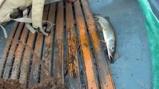 Воблер с Aliexpress который делает всю рыбалку!!! Воблеры BearKing с Aliexpress