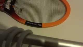 spider killed by bug zapper swatter