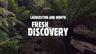 Take a Road Trip: Launceston & Northern Tasmania
