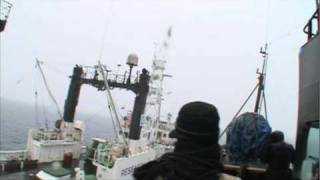 Whale Wars: Tactics: Butyric Acid (Stink Bombs)