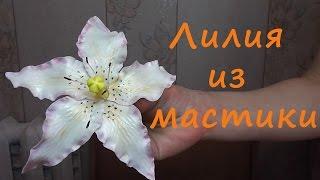 Лилия из мастики (Цветы из сахарной мастики)