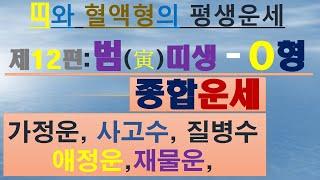 범띠,o형,재물운,사업운,애정운,가정운, 010/4258/8864