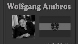 Wolfgang Ambros - Wia de Wintasunn