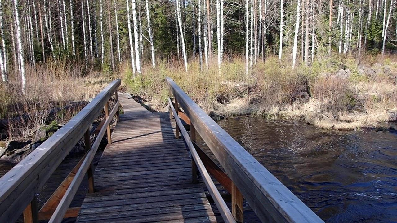 Ala Koitajoki