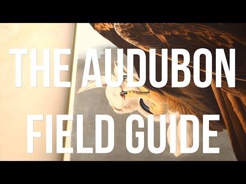 The Audubon Field Guide