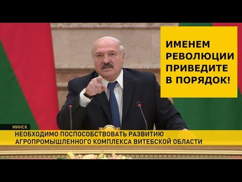 «Именем революции приведите в порядок!» Лукашенко требует дисциплины в АПК Витебщины