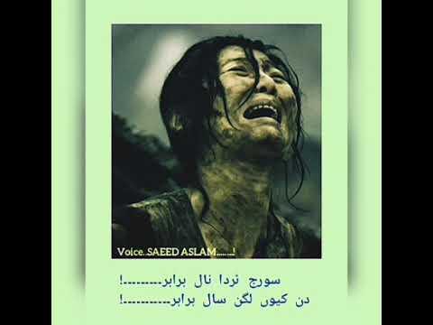 Neela Peela Laaal Brabar By Saeed Aslam |Punjabi Poetry For Whatsapp Status 2019