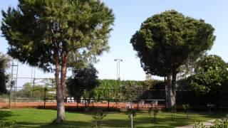 Турция Аланья Justiniano Club Park Conti 5* территория отеля часть 1(Это видео создано в редакторе слайд-шоу YouTube: http://www.youtube.com/upload., 2015-06-16T08:40:35.000Z)