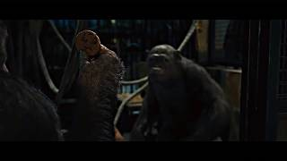 Скачать Rise Of The Planet Of The Apes 2011 Apes Together Strong Cookie Movie Clip HD