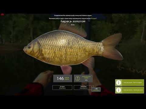 Русская рыбалка 4. Как...
