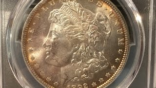 PCGS unboxing of Morgan and Peace dollars with a special 1950 proof penny