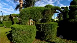 """Achamos no Brasil: homem """"mãos de tesoura"""" transforma árvores em esculturas surpreedentes"""