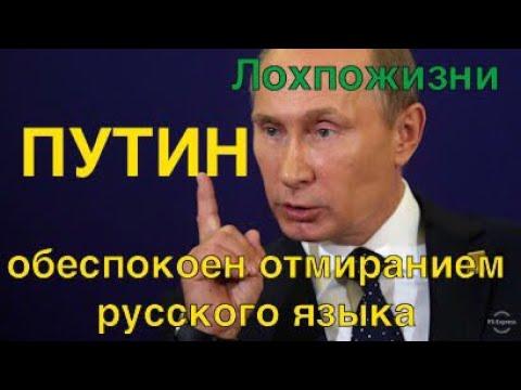 Про беспокойство Путина о русском языке