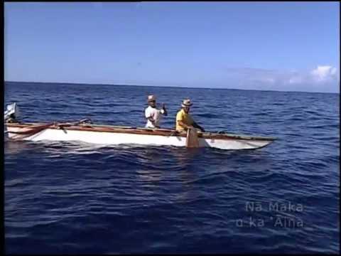Hawaiian Style 'opelu Fishing - Hokai Ua Lawai'a Makapa'a