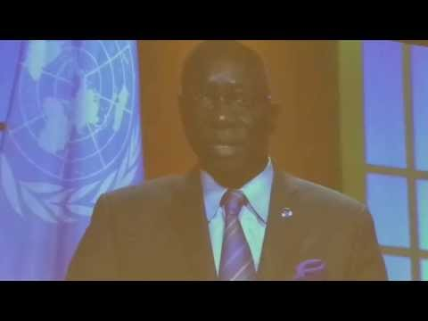 Mr. Adama Dieng, Special Advisor to the Secretary General of the UN