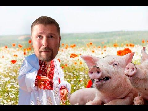 Свиньи, Крым, чудесные победы, ужасные зрады thumbnail
