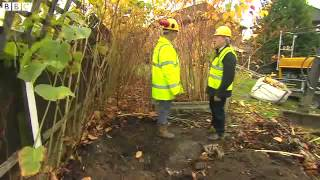 Fines for failure to control Japanese Knotweed