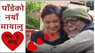 पाँडेको नयाँ मायालु , Bhadragol, Best Comedy Compilation ||भद्रगोल ||
