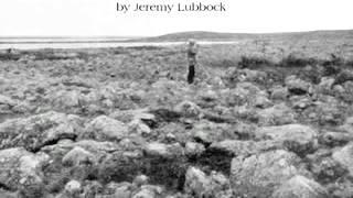 """Jeremy Lubbock - """"Tears for the Fallen"""""""