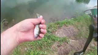 Санкт Петербург рыбалка на окуня с Микроджигом Mormo 2021 спиннинг metsyi tip top накормил уток