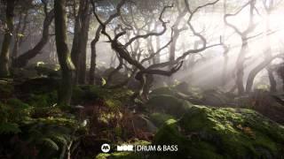 Nookie - Rebounded (ActRaiser Remix)