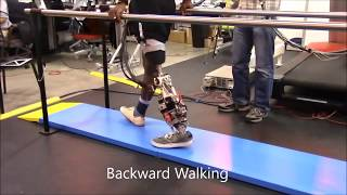 Non-Rhythmic Activities with a Powered Prosthetic Leg