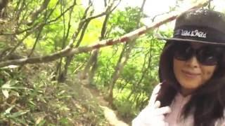 コース:武平峠→鎌ヶ岳→武平峠 登山日:2016年6月11日 帰りに、三岐鉄道...