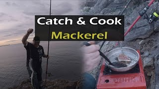 Catch and Cook UK - mackerel from the shore.