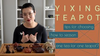 How to choose your first Yixing Zisha (purple clay) teapot? | Chinese gongfu brewing | ZhenTea