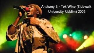 Anthony B - Tek Wine (Sidewalk University Riddim) 2006