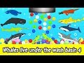 [EN] Whales live under the wash basin 4, kids animals animation, whales adventureㅣCoCosToy