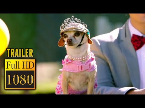 🎥 DOG DAYS (2018) | Full Movie Trailer in Full HD | 1080p