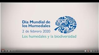 La biodiversidad de los humedales importa para que la vida prosperesar 2020
