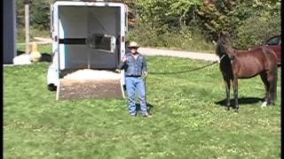 Trailer Loading Difficult Horses Video 3 Part 1
