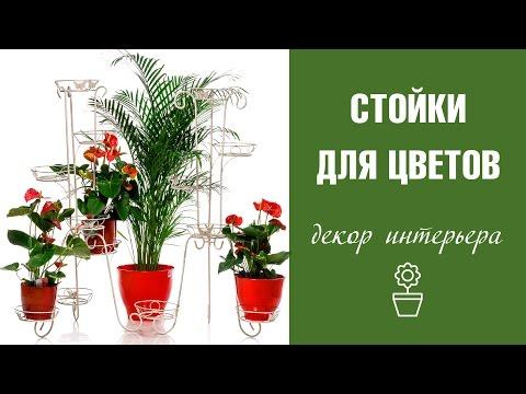 Стойки для цветов ❀ высокие подставки под цветы ❀ Интернет-магазин Hitsad