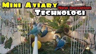 Mini Aviary Lovebird - Modifikasi Kandang kotak biasa Menjadi Luar biasa !