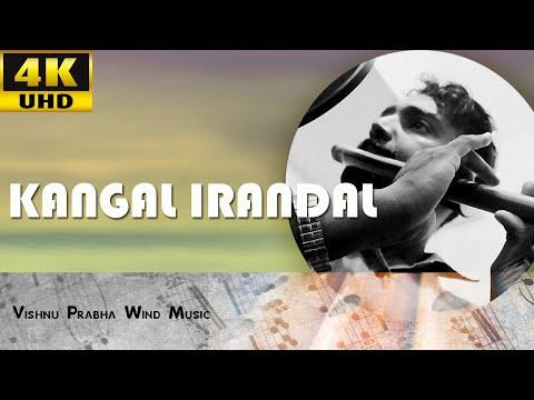 Kangal Irandal Flute - By Vishnu Prabha | (4K)