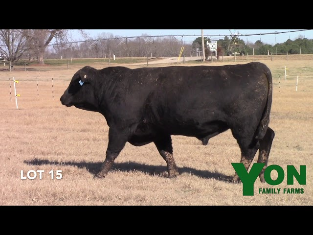 Yon Family Farms Lot 15