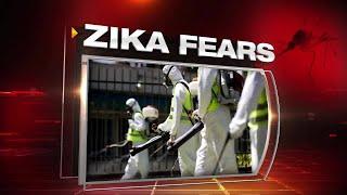 Hurricane Matthew winds kill Zika mosquitoes