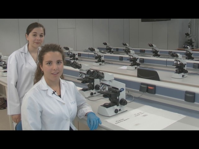 Estudio de células animales y vegetales con el microscopio óptico