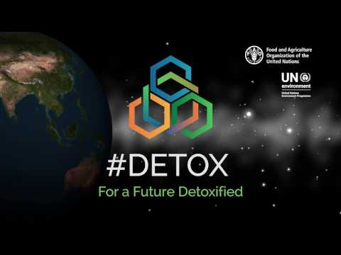 Introduction to the 2017 Rotterdam Convention COP: for a future detoxified #detox