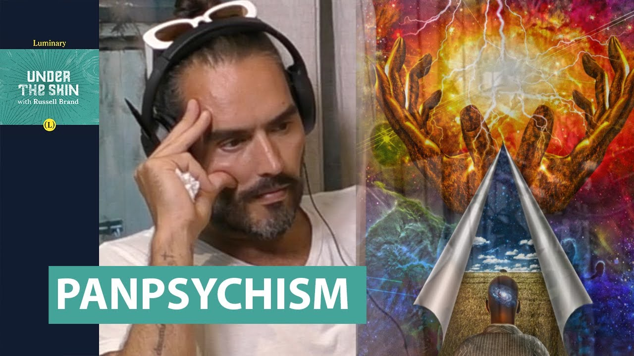 Is EVERYTHING CONSCIOUS!? | Russell Brand & Prof. Phillip Goff