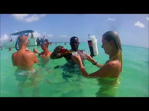 Our dream vacation (PUNTA CANA) 2018