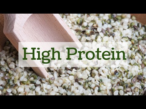 Food Fact: Hemp Seeds and Protein