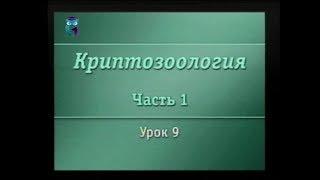 Криптозоология. Урок 1.9. Зоологические загадки Чёрного континента
