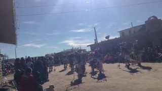 Hopi Buffalo 2015