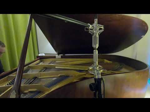 Extict Audio BM9 - Blumlein Pair - 1940 Welmar 6'1 piano at Valley Wood Studio